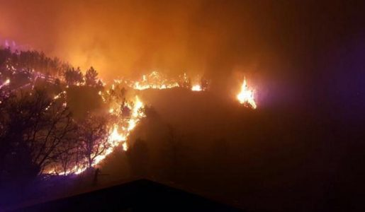 Incendi sulle alture di Genova: notte di paura, chiuso un tratto della A12